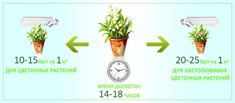 Подсветка домашних растений