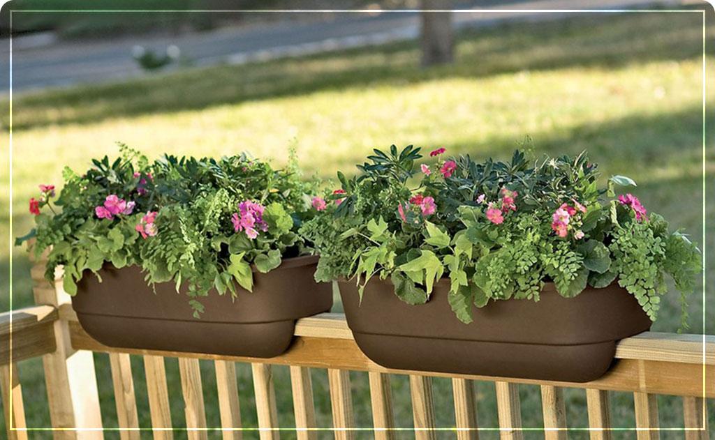 цветы в кашпо на балконе